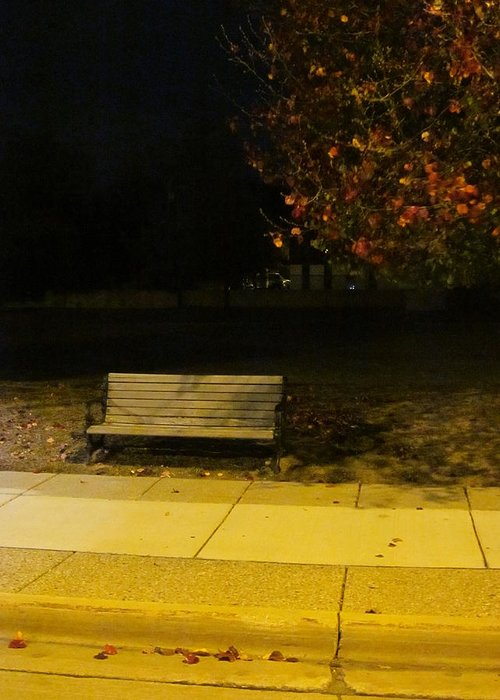 Guy Ricketts Photography And Art Greeting Card featuring the photograph Autumn's Nocturnal Solace by Guy Ricketts