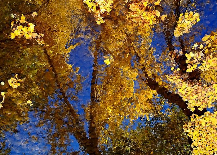 Color Greeting Card featuring the photograph Autumns Reflections by Steven Milner