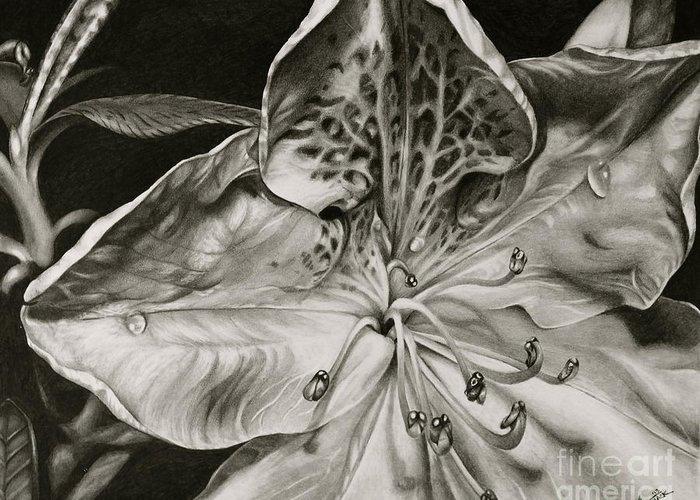 Flower Greeting Card featuring the drawing Azalea by Jennifer Slack