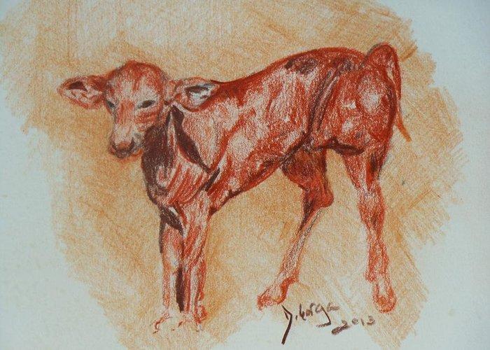 Baby Animals Greeting Card featuring the drawing Baby Calf by Deborah Gorga