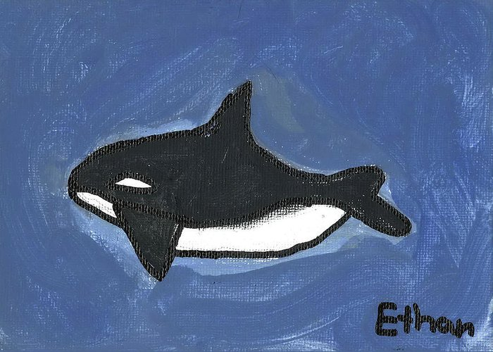Baby Orca Greeting Card featuring the painting Baby Orca by Fred Hanna