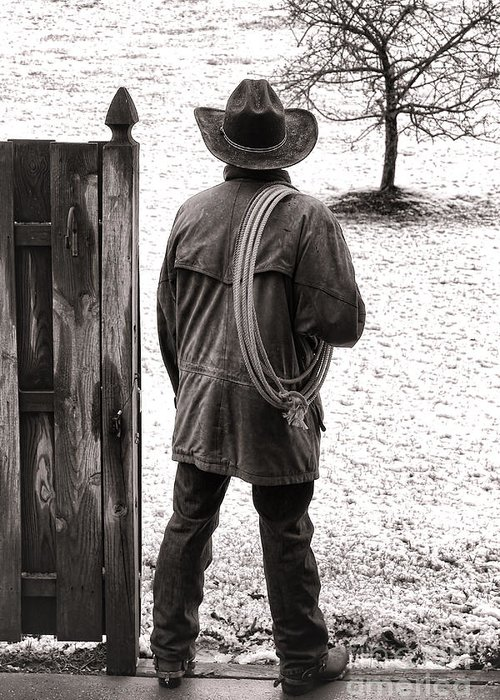 Rodeo Greeting Card featuring the photograph Back To Work by Olivier Le Queinec