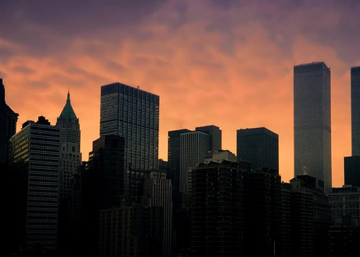 New York City Greeting Card featuring the photograph Backlit by Joann Vitali