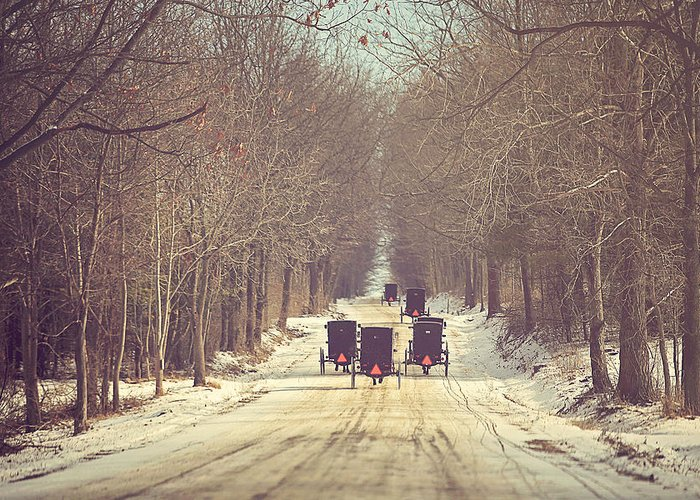 Amish Buggy Greeting Cards