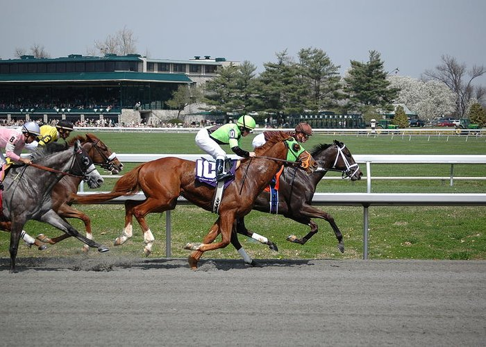 Keeneland Greeting Card featuring the photograph Backstretch by Paul Harris