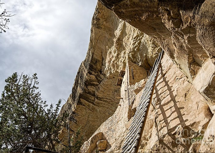 Mesa Verde National Park Greeting Card featuring the photograph Balcony 32' Ladder by Keith Ducker