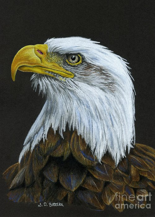 Drawing Of Eagle Greeting Cards