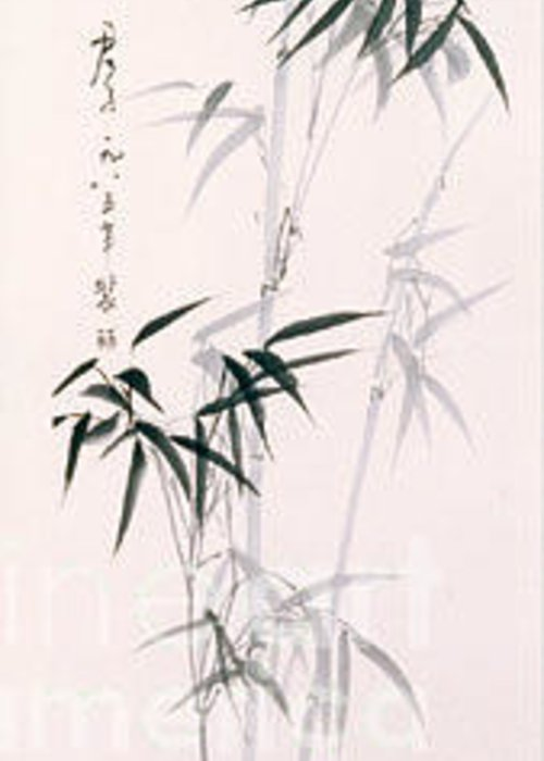 Bamboo Greeting Card featuring the painting Bamboo by Fereshteh Stoecklein