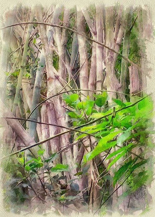 Bamboo House Digital Art Greeting Cards