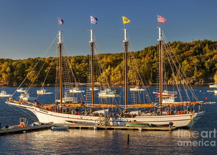 4 Masted Greeting Card featuring the photograph Bar Harbor Schooner by Brian Jannsen