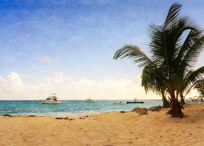 Barbados Greeting Card featuring the photograph Barbados Beach by Garvin Hunter
