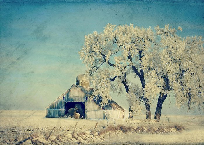 Barn Greeting Card featuring the photograph Barn Frosty Trees by Julie Hamilton