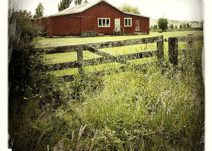 Green Greeting Card featuring the photograph Barn In Field by Les Cunliffe