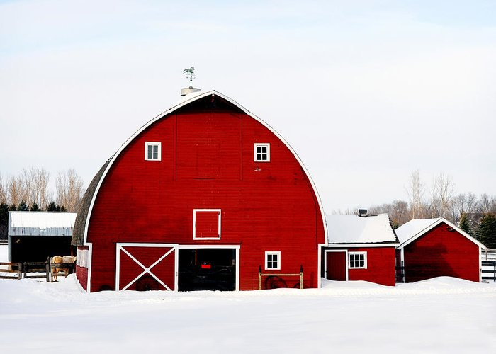 Barn Greeting Card featuring the photograph Barn In Snow by Val Stone Creager