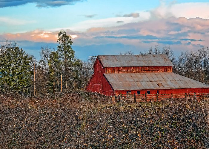 Barn Greeting Card featuring the photograph Barn In The Berry Bushes by William Havle