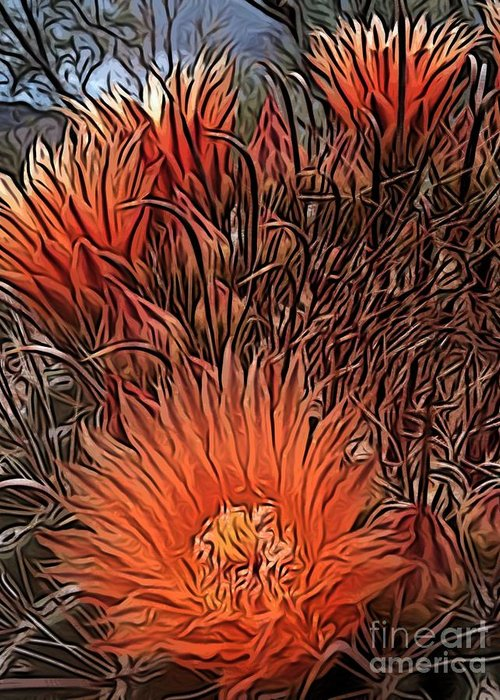 Orange Greeting Card featuring the digital art Barrel Cactus by Jen Brooks Art