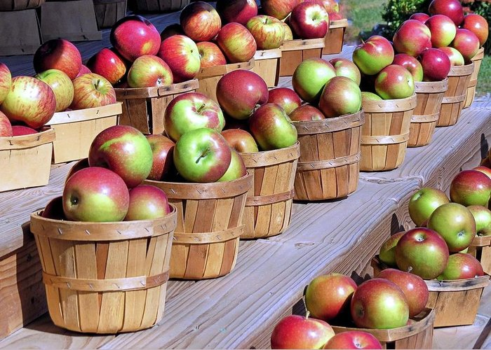 Baskets Or Apples Greeting Card featuring the photograph Baskets Of Apples by Janice Drew