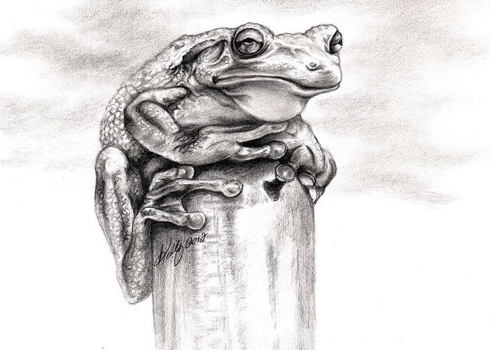 Frog Greeting Card featuring the drawing Batting Coach by Kathleen Kelly Thompson