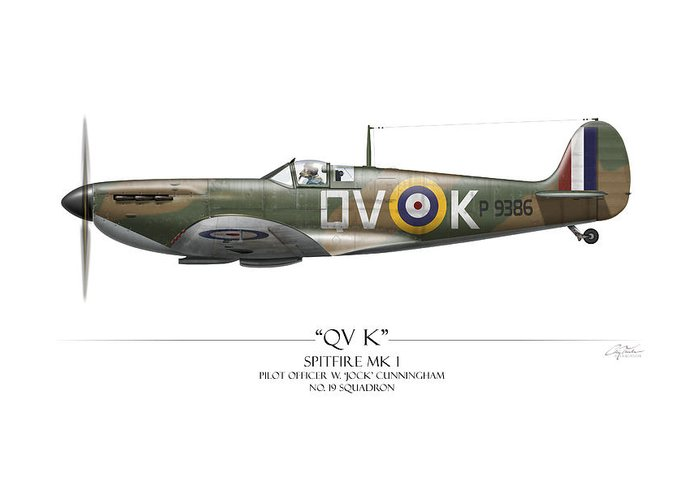 RAF Spitfire print The Pride of Britain signed by 3 Battle of Britain pilots