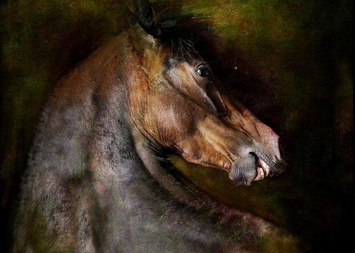 Horse Greeting Card featuring the photograph Bay Dignity by Dorota Kudyba