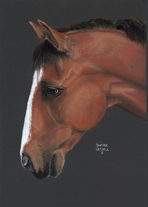 Horse Greeting Card featuring the pastel Bay Horse by Heather Gessell