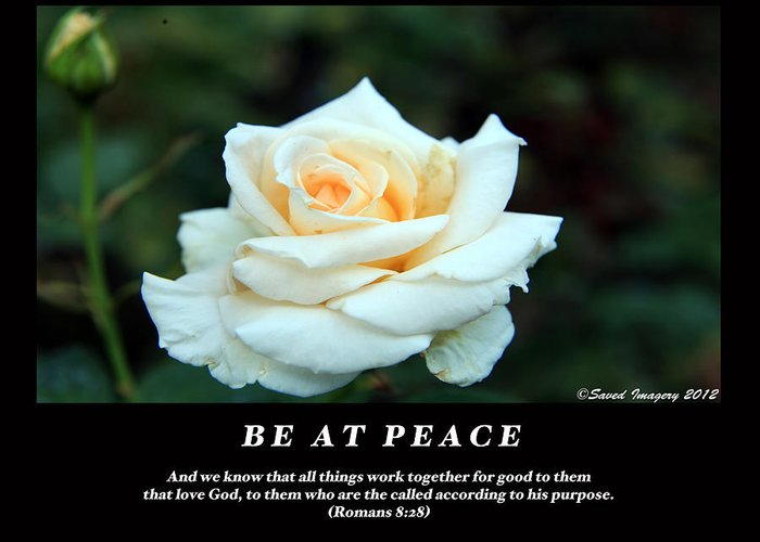 Greeting Card featuring the photograph Be At Peace by Lawrence Lauray