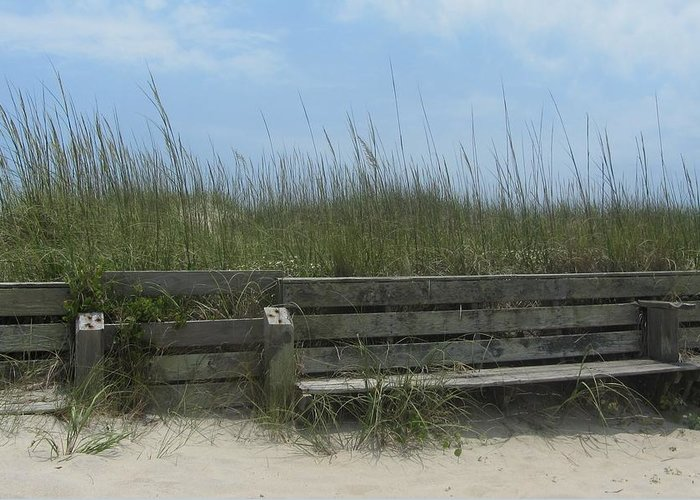 Hatteras Greeting Card featuring the photograph Beach Grass And Bench by Cathy Lindsey