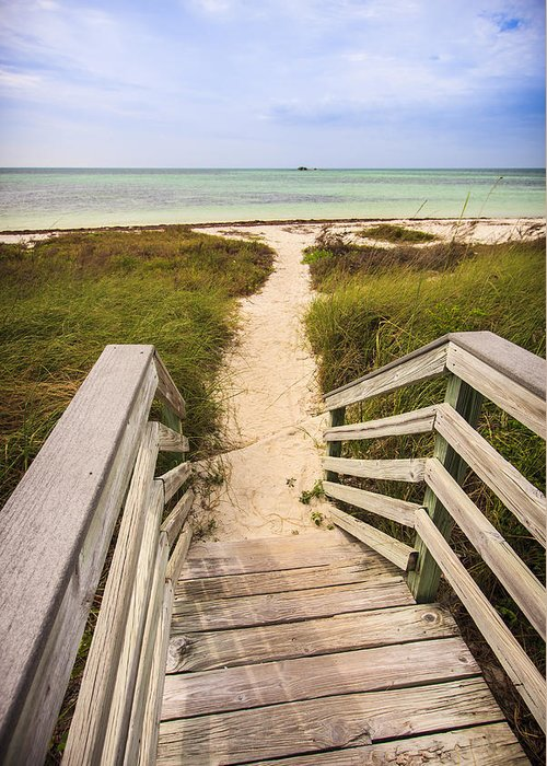 3scape Photos Greeting Card featuring the photograph Beach Path by Adam Romanowicz