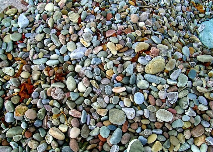 Beach Pebbles Greeting Card featuring the photograph Beach Pebbles by Paul Williams