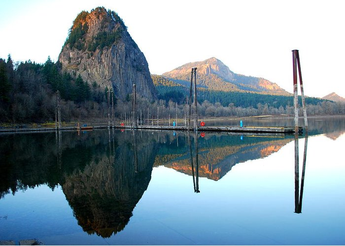Tree Greeting Card featuring the photograph Beacon Rock Reflecions by Kathy Sampson