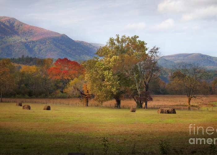 Cades Cove Greeting Card featuring the photograph Beautiful Cades Cove by Lena Auxier