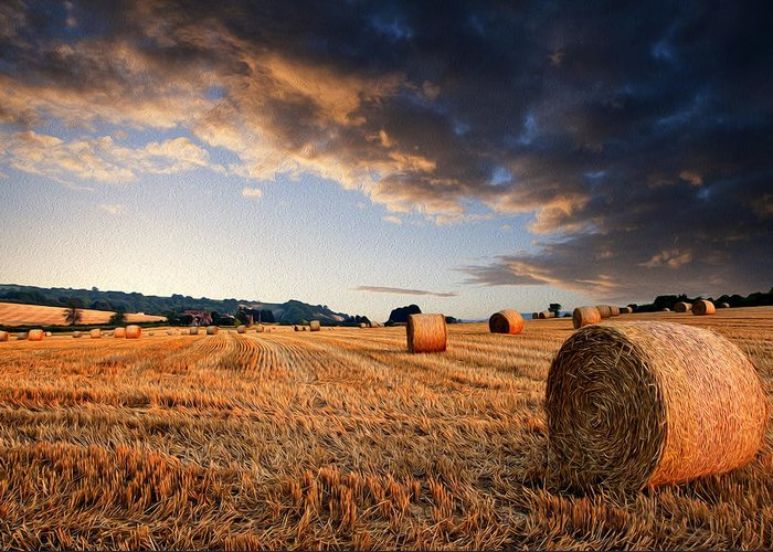 Landscape Greeting Card featuring the photograph Beautiful Hay Bales Sunset Landscape Digital Paitning by Matthew Gibson