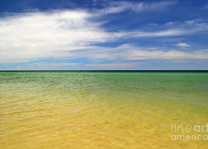 Landscape Greeting Card featuring the photograph Beautiful St George Island Water by Holden Parker