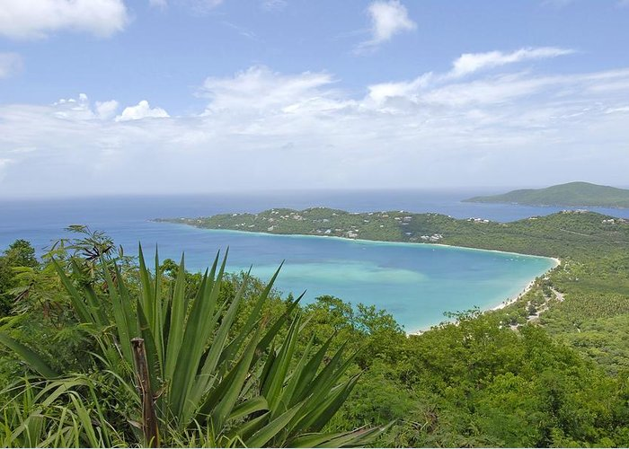 Saint Thomas Greeting Card featuring the photograph Beautiful St Thomas by Willie Harper