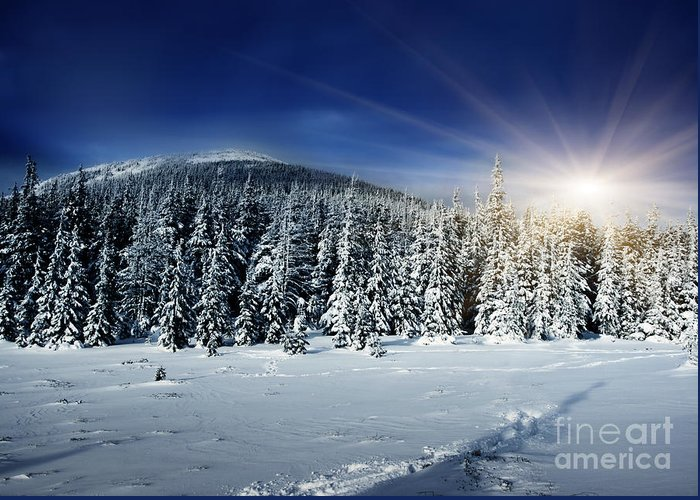 Beautiful Greeting Card featuring the photograph Beautiful Winter Landscape With Snow Covered Trees by Boon Mee