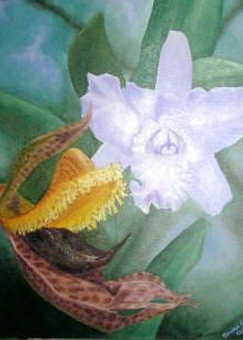 Orchids Greeting Card featuring the Beauty And The Beast by Rachel Cruse
