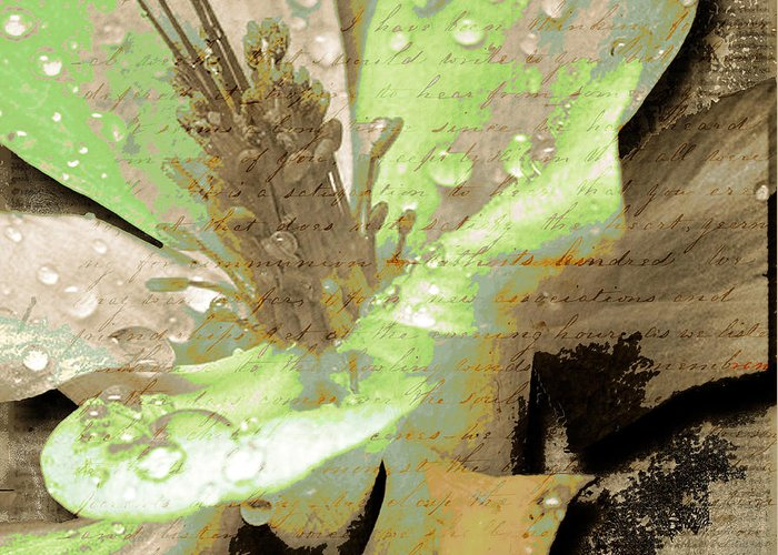 Greeting Card featuring the mixed media Beauty Viii by Yanni Theodorou