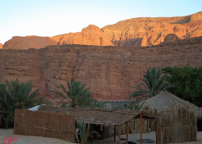 Colette Greeting Card featuring the photograph Beduin Camp In The Sinai Desert Egypt by Colette V Hera Guggenheim