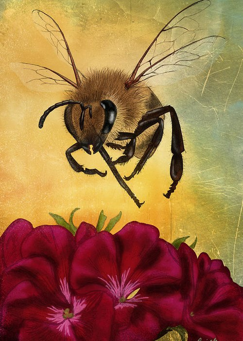 Honey Greeting Cards