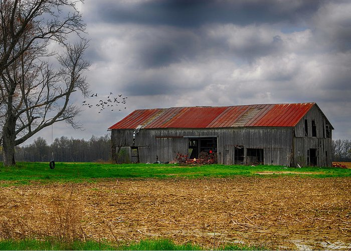 Stormy Skies. Storm Clouds. Storms. Barn. Farm. Old Barn. Tractors. Trees. Tree Tire Swing. Fields. Corn Field. Grass. Forest. Woods. Wildlife. Birds. Ducks. Mallards. Nature. Photography. Prints. Canvas. Poster. Greeting Cards. Greeting Card featuring the photograph Before The Storm by Mary Timman