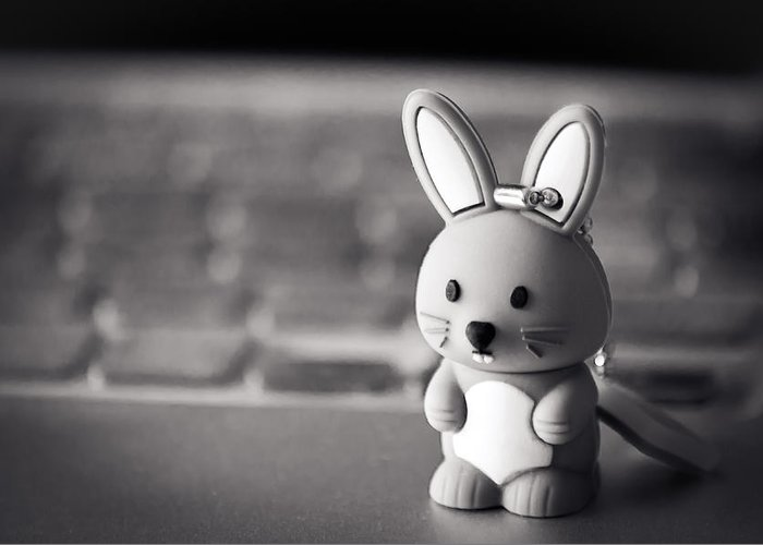 2014 Greeting Card featuring the photograph Belle Mini-lapin by Jose Flores