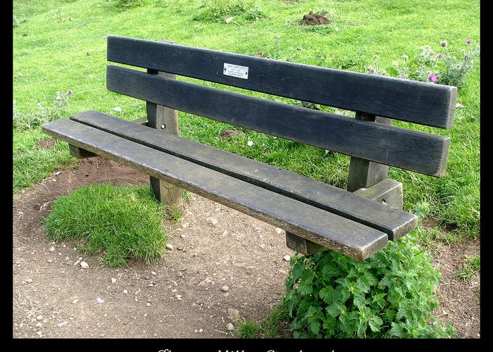 1000benches Greeting Card featuring the photograph Bench 16 by Roberto Alamino