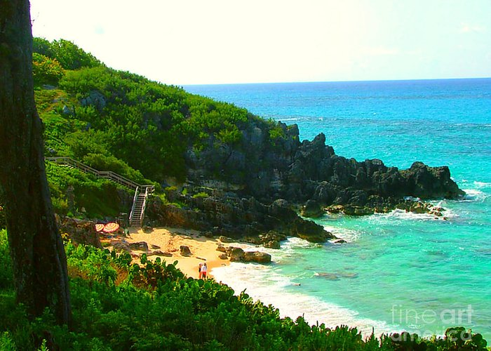 Bermuda Greeting Card featuring the photograph Bermuda Beach by Judy Palkimas
