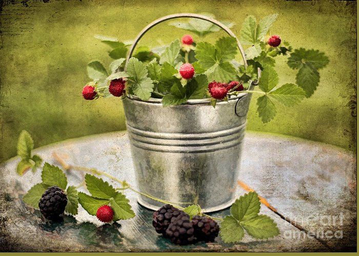 Still Life Greeting Card featuring the photograph Berries by Darren Fisher