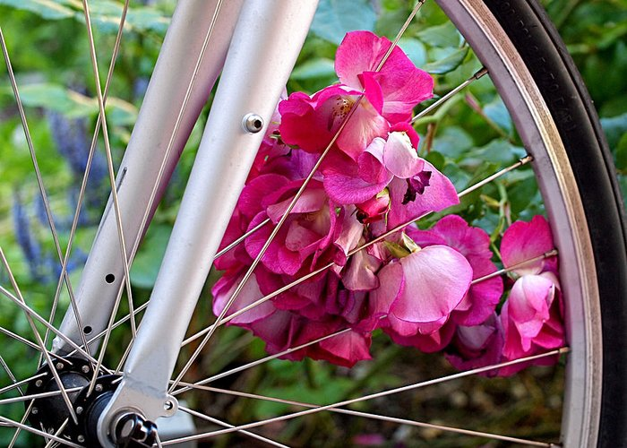 Bicycle Greeting Card featuring the photograph Bespoke Flower Arrangement by Rona Black
