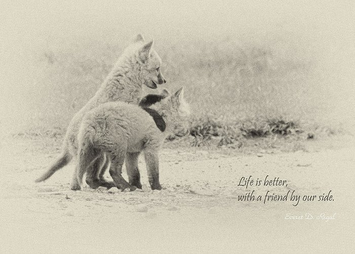 Fox Greeting Card featuring the photograph Best Friends by Everet Regal