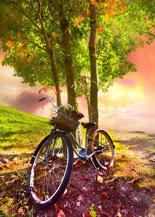 Appalachia Greeting Card featuring the photograph Bicycle Under The Tree by Debra and Dave Vanderlaan