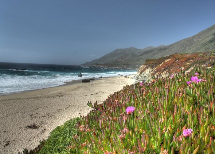 Big Sur Greeting Card featuring the photograph Big Sur Beach by Jane Linders