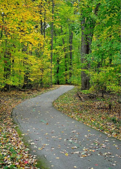 Pathway Greeting Card featuring the photograph Bike Path by Frozen in Time Fine Art Photography