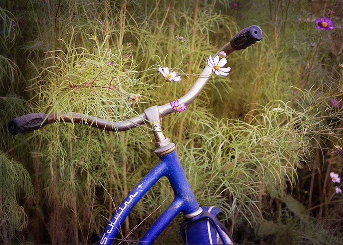 Bicycle Greeting Card featuring the photograph Biking In The Posies by Amy Medina